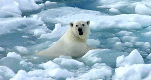 Küresel ısınma dünyayı değiştirecek