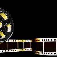 28. Altın Koza Film Festivali'nin jüri üyeleri belli oldu