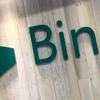 Bing'in beklenmeyen yükselişi