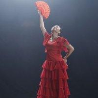 Demet Akbağ'dan flamenko sürprizi!