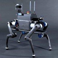 Düştüğü yerden kalkabilen robot köpek