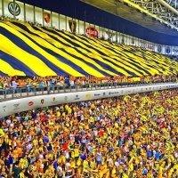 Fenerbahçe başkan vekili Erol Bilecik oldu!