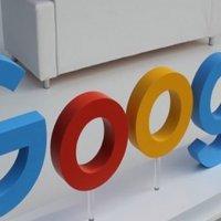 Hollandalılar Google'da bunları aradı!