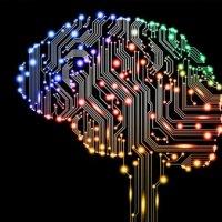 İnsan beyni ilk kez internete bağlandı