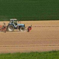 İsviçre'de etik gıda kurallarına ret oyu