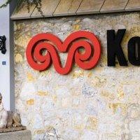 Koç Holding'den 80 milyon liralık yatırım!