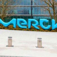 Merck Türkiye yeni sosyal medya ajansını seçti