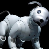 Sony'den iPhone X Fiyatına Evcil Robot Köpek: Aibo