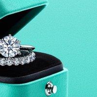 Tiffany & Co. 3 milyon dolar bağış yapıyor...