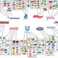 Tüm dünya, bu 10 şirketi çalışıyor
