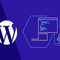 Türkiye'de en çok WordPress altyapısı kullanıldı...