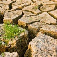 Türkiye'nin iklim okuryazarlığı seviyesi yetersiz