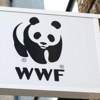 WWF-Türkiye dijital ajansını seçti