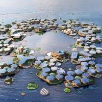 Yüzer şehirler projesi: Oceanix City