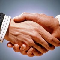 havucum.com iletişim çalışmaları için Marjinal PN ile anlaştı!